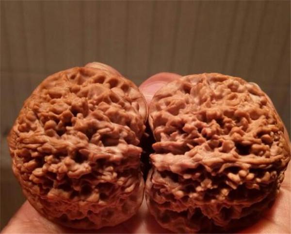 核桃分心木泡水喝的功效与作用 核桃分心木多少钱一斤