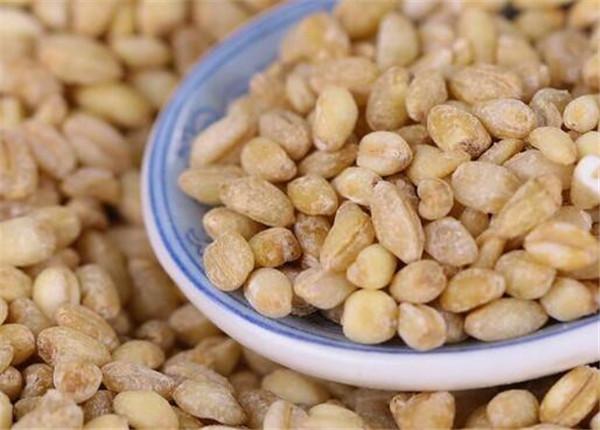 麦米是什么米 麦米的功效与作用