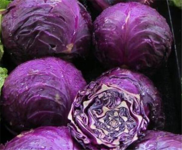 紫甘蓝怎么做好吃 紫甘蓝怎么凉拌