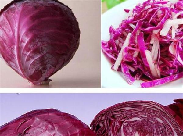 紫甘蓝的营养价值 紫甘蓝的做法大全