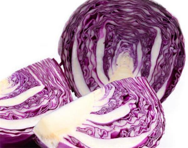 紫甘蓝种植密度多少合适 紫甘蓝种植前景好不好
