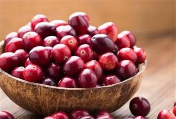 蔓越莓的功效与作用 蔓越莓的营养价值