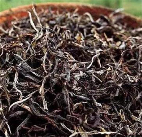 普洱茶的产地是哪里 普洱茶价格多少钱一斤