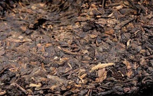 云南普洱茶多少钱一斤 云南普洱茶有什么功效
