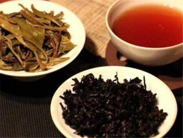 鸡尾普洱茶怎么样 普洱茶有哪些品种