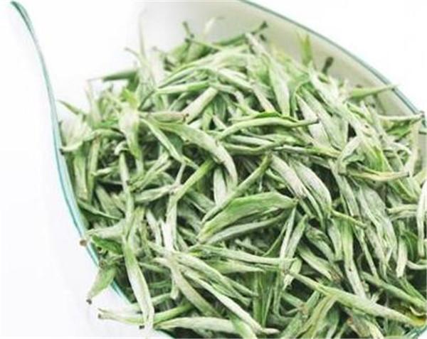 黄山毛尖是红茶还是绿茶 每天一杯绿茶有什么好处