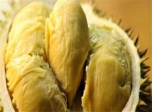 榴莲壳和榴莲核的功效与作用 吃榴莲的好处