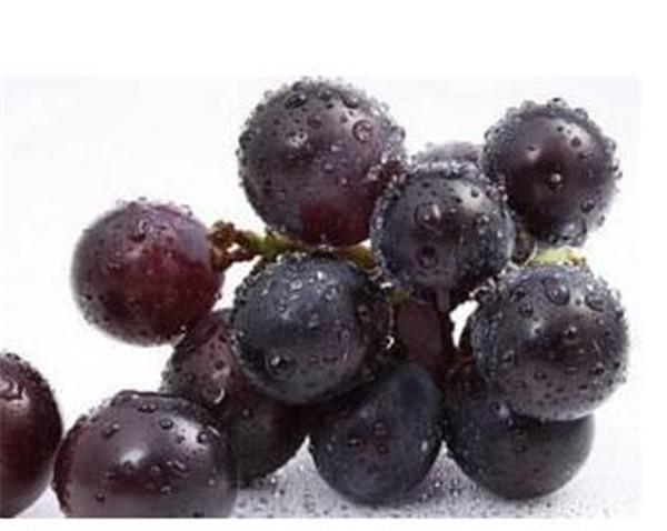葡萄皮的功效与作用 吃葡萄不吐葡萄皮可以吗