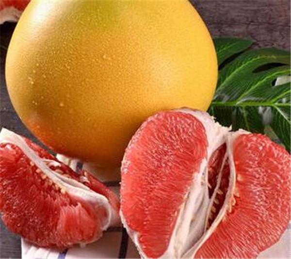红肉蜜柚为什么苦 黄心蜜柚和红心蜜柚有啥区别