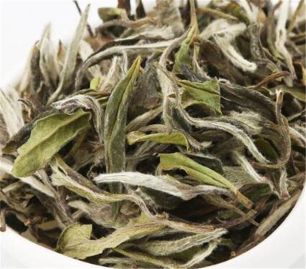 白牡丹茶怎么种植 白牡丹用多少温度的水
