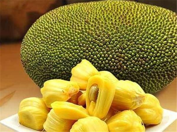 菠萝蜜的功效与作用 菠萝蜜怎么剥