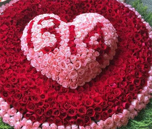 999朵玫瑰大概多少钱图片 999朵玫瑰代表什么意思