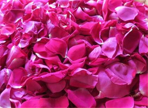 食用玫瑰花的种植方法及养护 食用玫瑰花瓣怎么保存