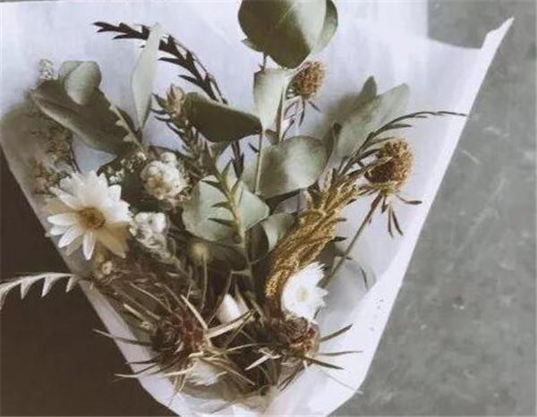 常见干花品种有哪些 为什么送花不能送干花