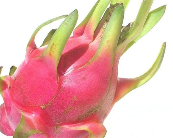 火龙果的营养价值成分有哪些 吃火龙果有什么好处和坏处