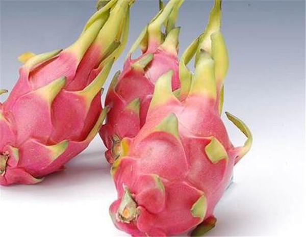 红心火龙果为什么比白心火龙果甜 火龙果的药用价值
