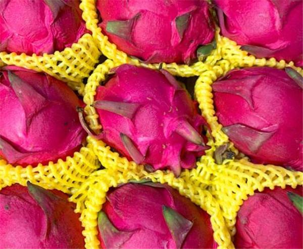 红绣球火龙果与红心火龙果的区别 红绣球火龙果的禁忌