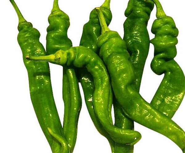 辣椒什么时候传入中国的 辣椒产地是哪里