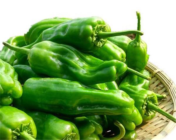 辣椒的价格多少钱一斤 辣椒属于什么类蔬菜