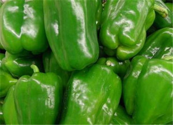 青椒和尖椒的区别 青椒需要放冰箱保存吗